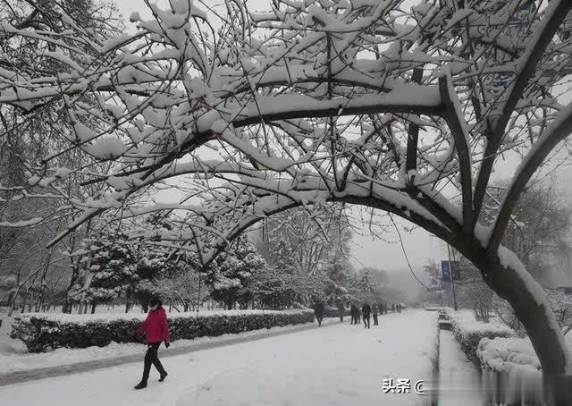 雪景很美,你们很暖