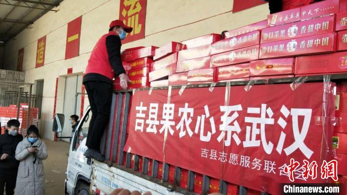 山西吉县果农情系武汉 3万余斤一级苹果捐赠医护人员 婚姻家庭 第2张