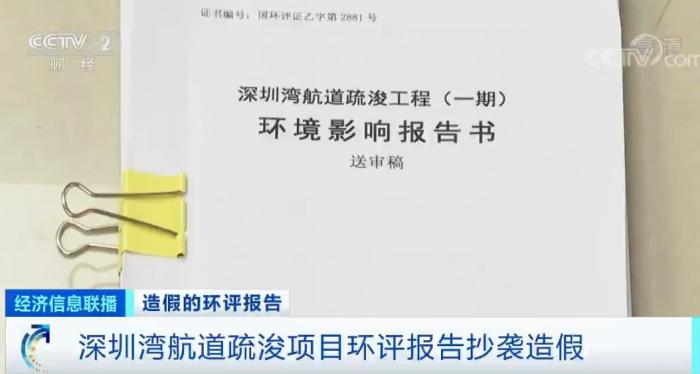"""启动问责和调查!""""深圳湾""""环评造假案有了新进展"""