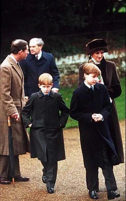 """威廉回忆母亲往事,英国专家:他们夫妇是""""新一代查尔斯戴安娜"""" 刑事辩护 第4张"""